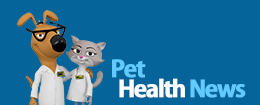 Max and Molly, Pet Health News