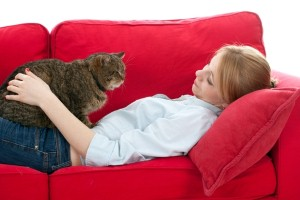 Nutrition vital for older cats' health