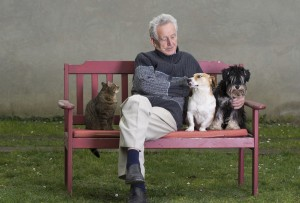 senior-man-with-pets-467257917