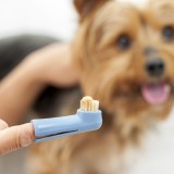 It's important to maintain your pet's dental health